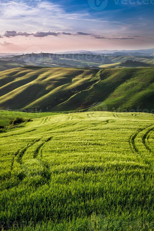 Beautiful view of the country footpath at sunset in Tuscany photo