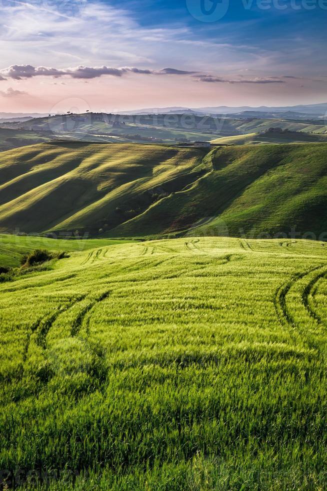 Hermosa vista del sendero del país al atardecer en Toscana foto