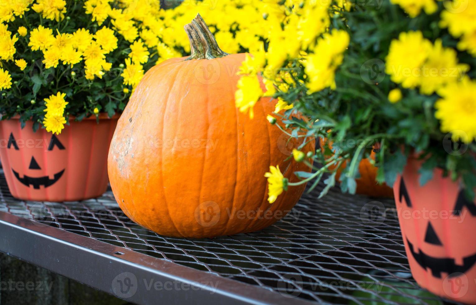 Halloween pumpkin and pots photo