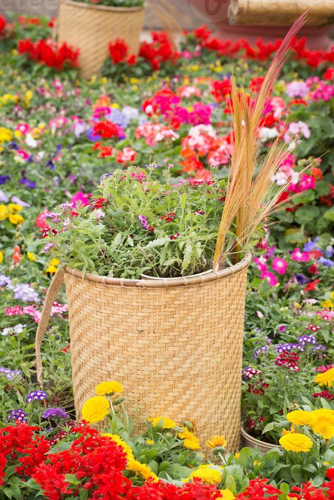 Traditional flower basket of ethnic groups. photo