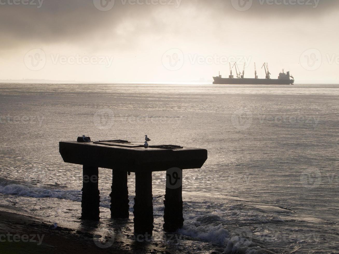 cais e observador de gaivotas no rio tejo foto