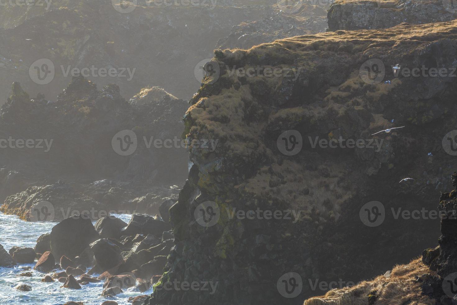 naturaleza de islandia foto