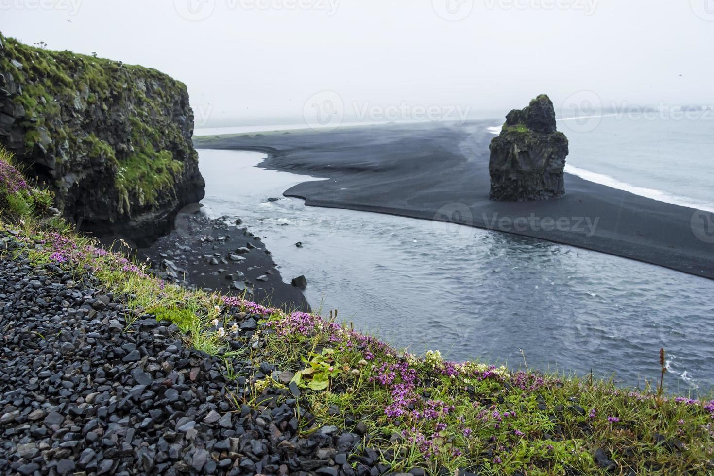 areia vulcânica negra na costa sul da Islândia foto