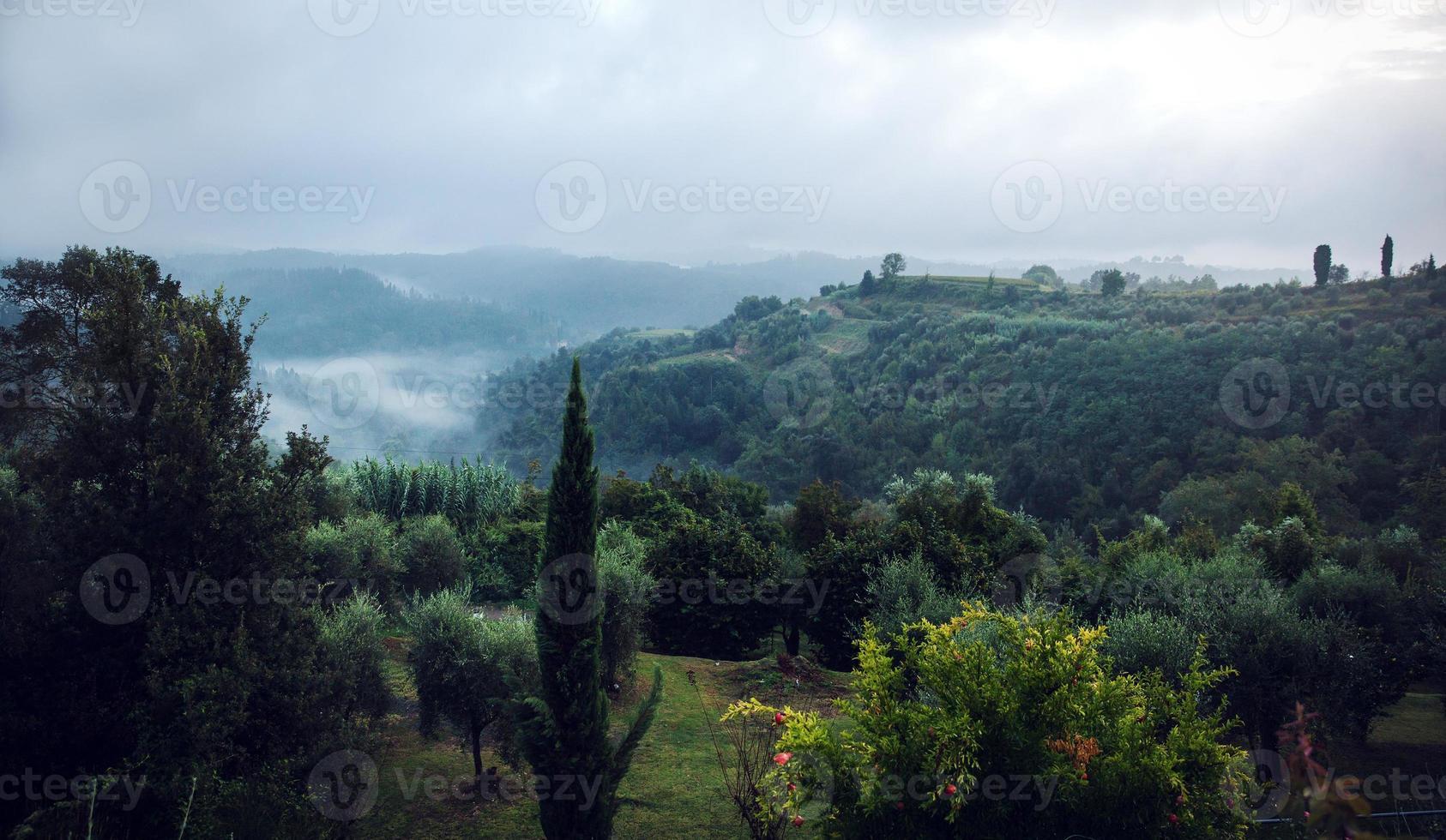 Foggy hillside in Tuscany Italy photo