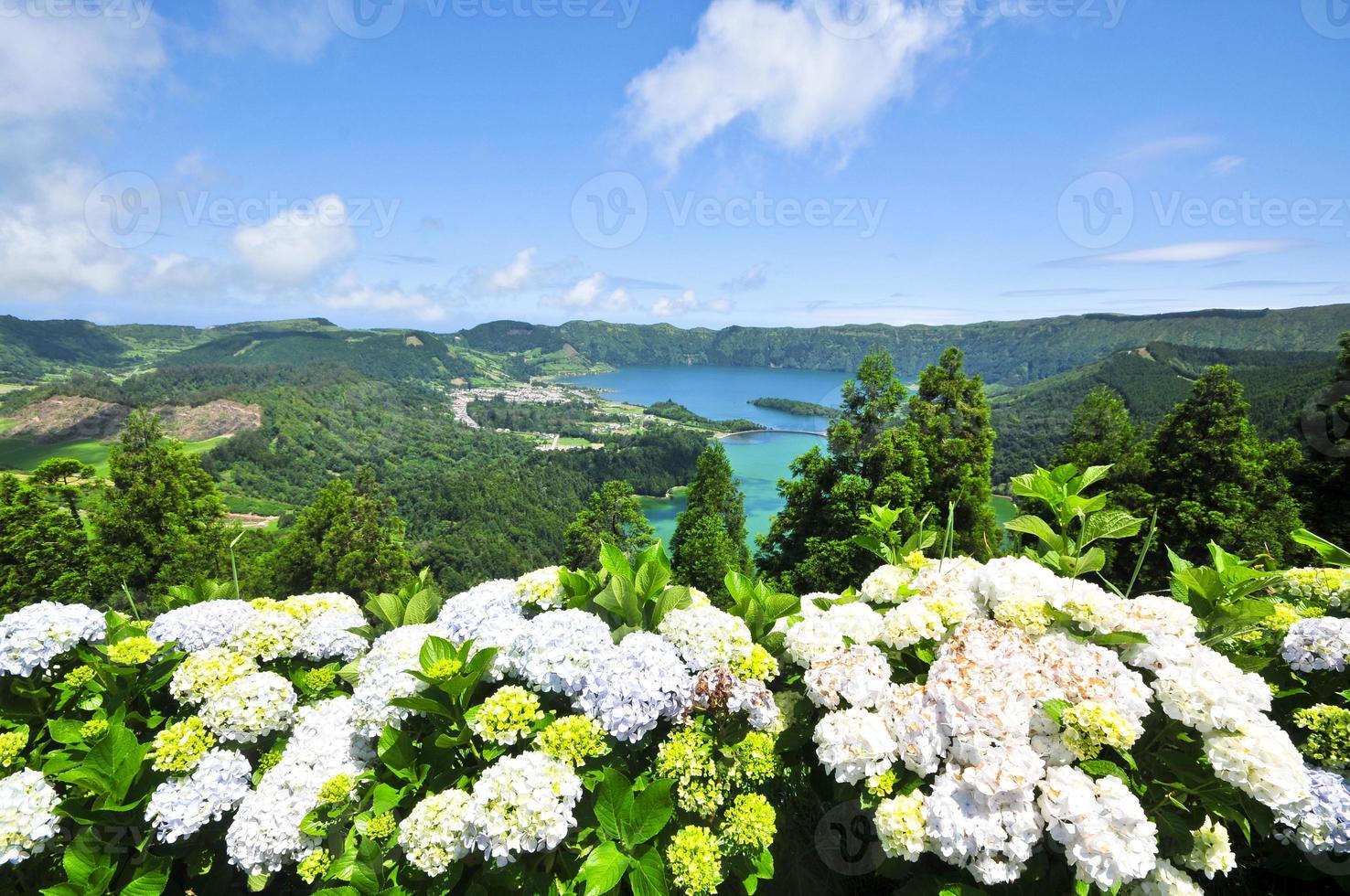 Lake and island flowers photo