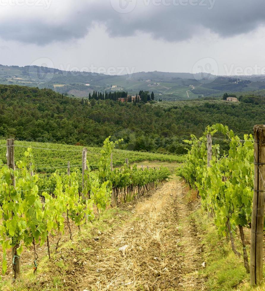 Chianti, Toscana foto