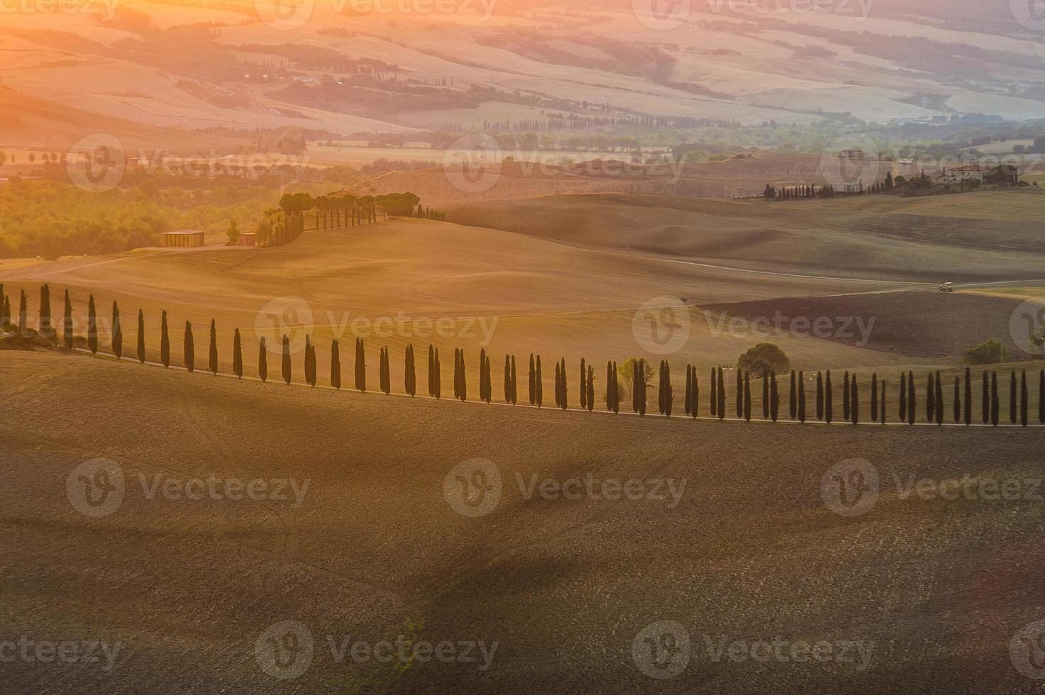 belos campos coloridos na toscana foto