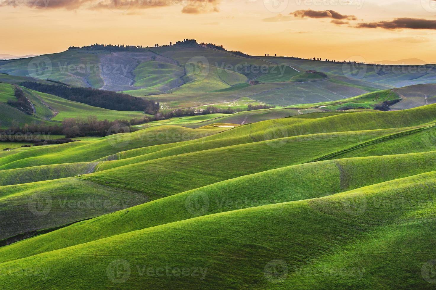 Sunny fields in Tuscany, Italy photo
