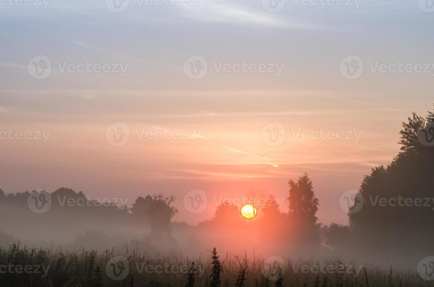 foggy morning in countryside photo