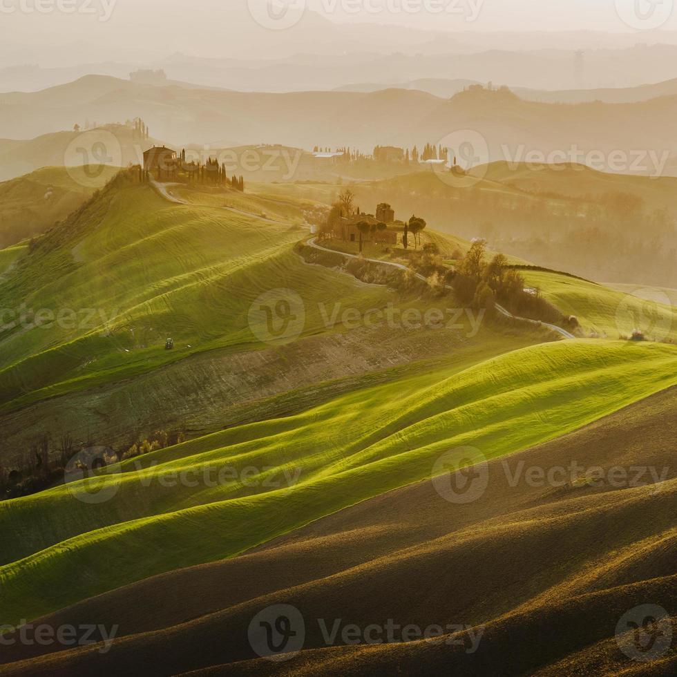 Primavera verde toscana al atardecer, Italia foto