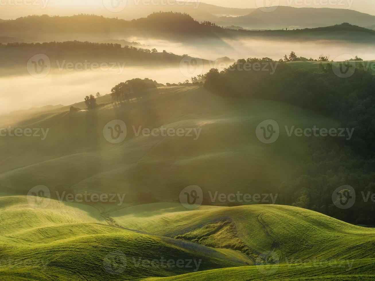 Campos toscanos envueltos en niebla, Italia foto