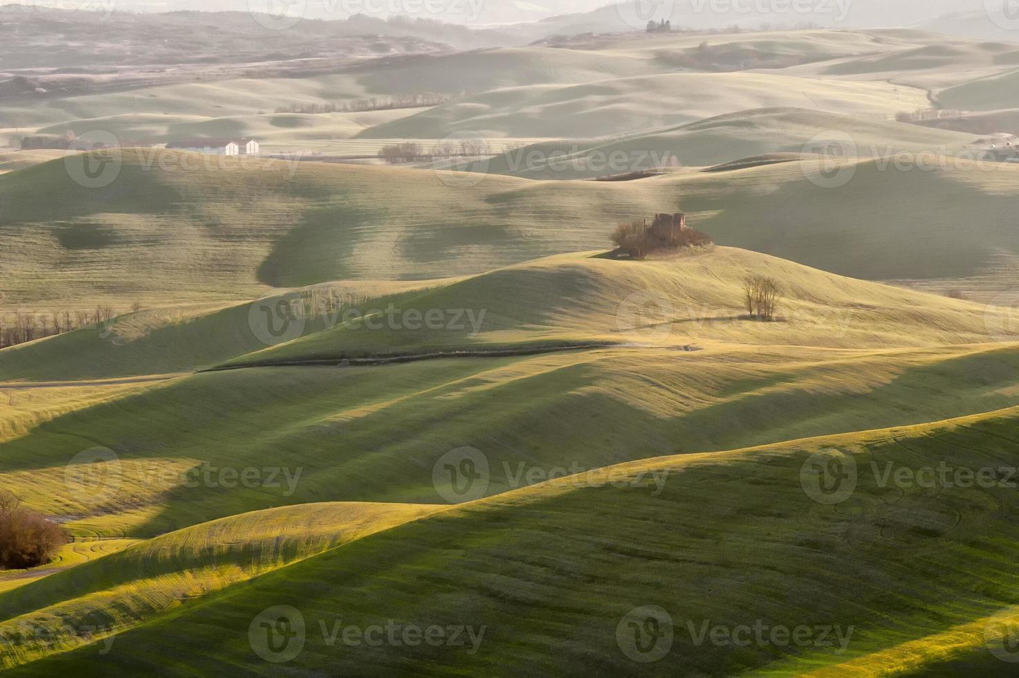 Colline toscane photo