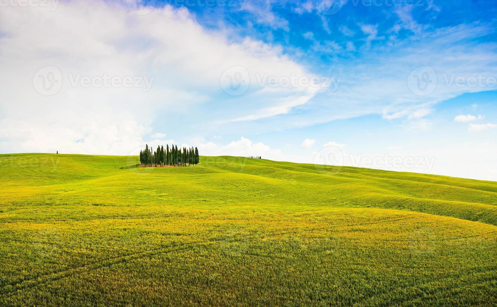 pintoresco paisaje toscano en val d'orcia, italia foto