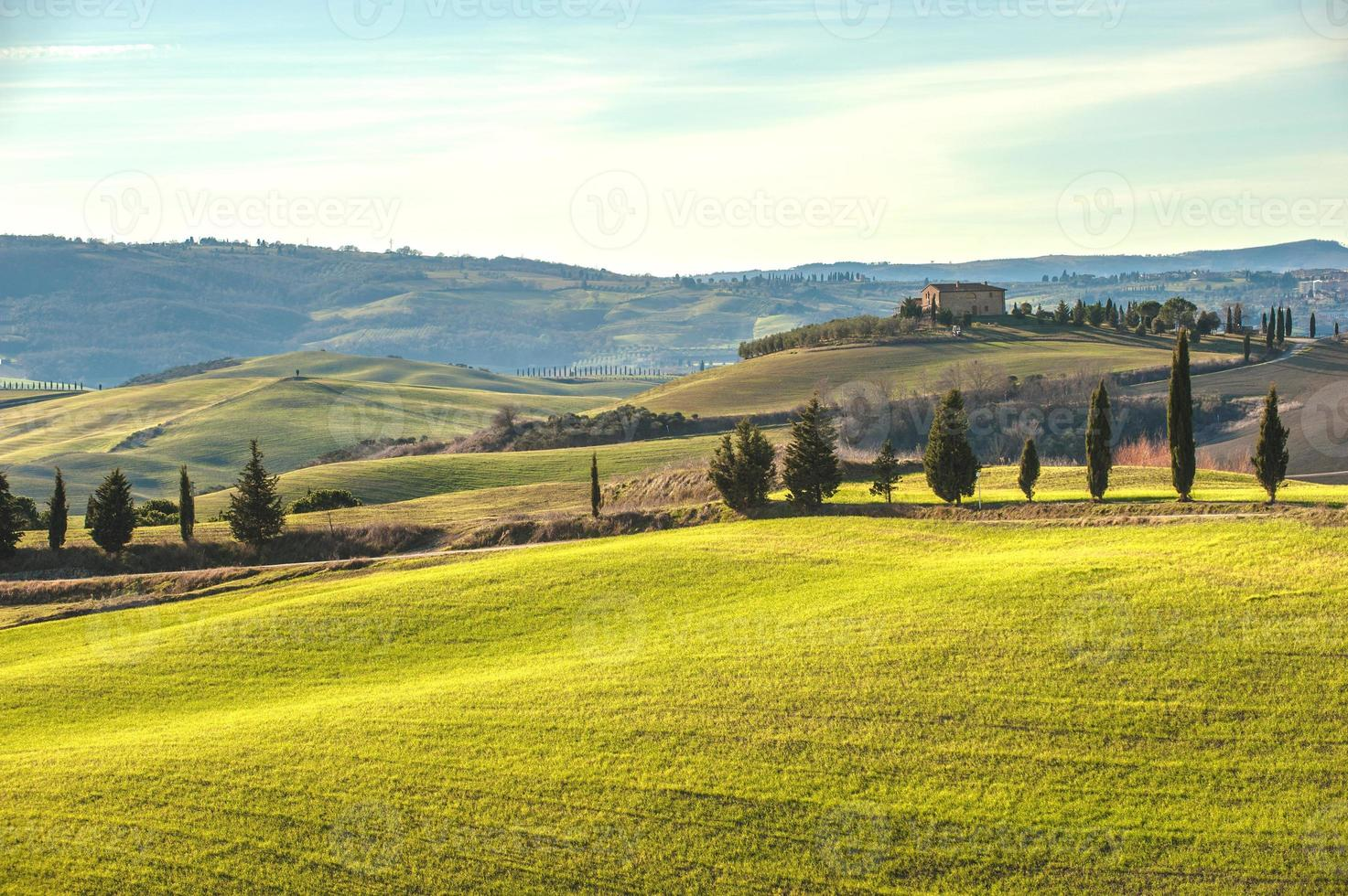 Artistic Tuscan landscape with cypresses, wavy fields and house photo