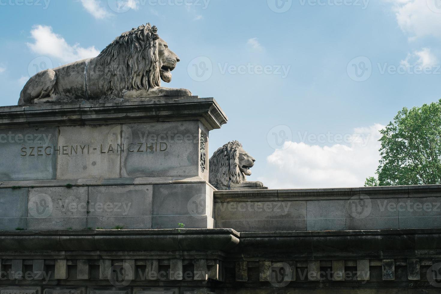 Estatuas de leones en el puente de las cadenas en Budapest foto