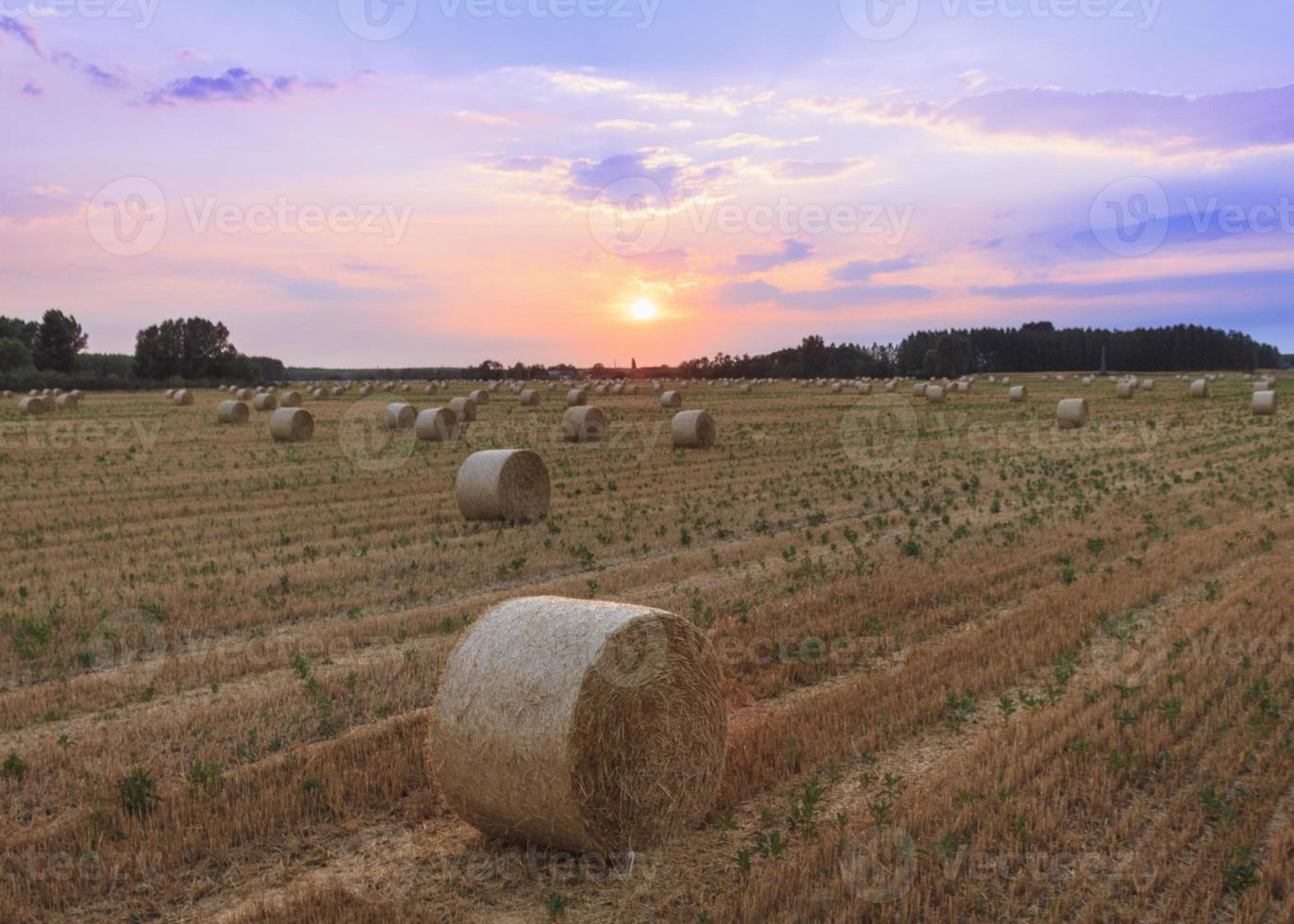 Fardos de heno al atardecer en Hungría foto
