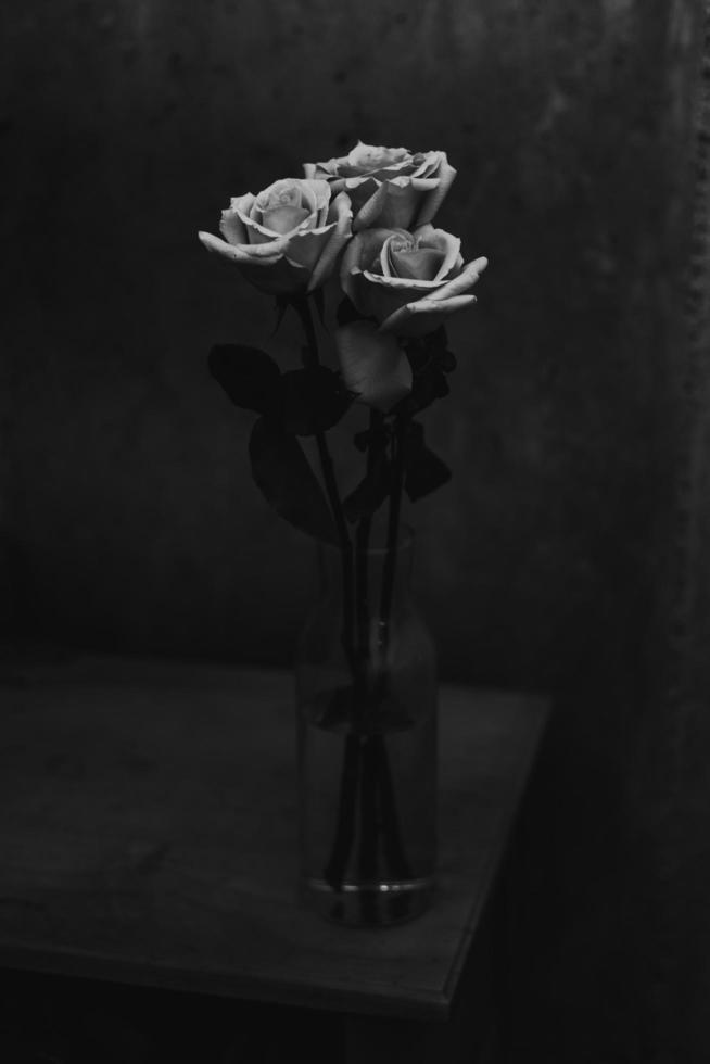 tres flores rosas en un jarrón foto