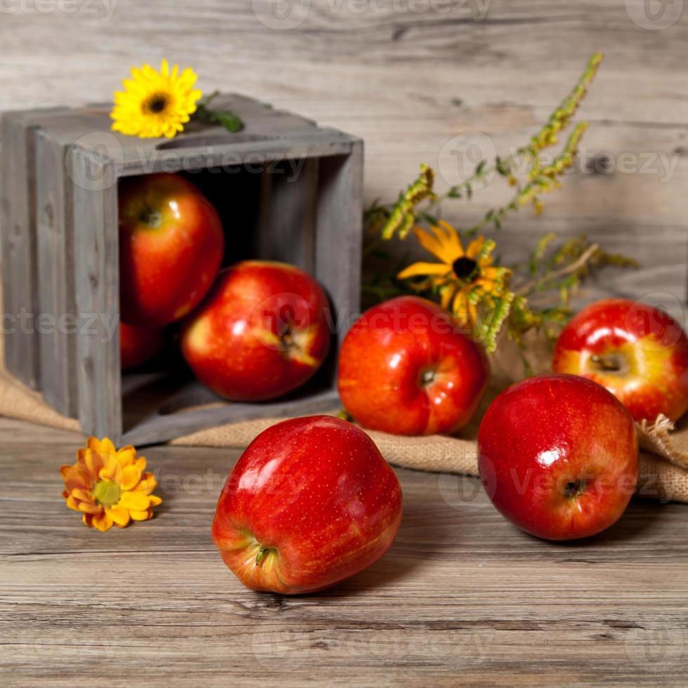 manzanas orgánicas rojas frescas foto