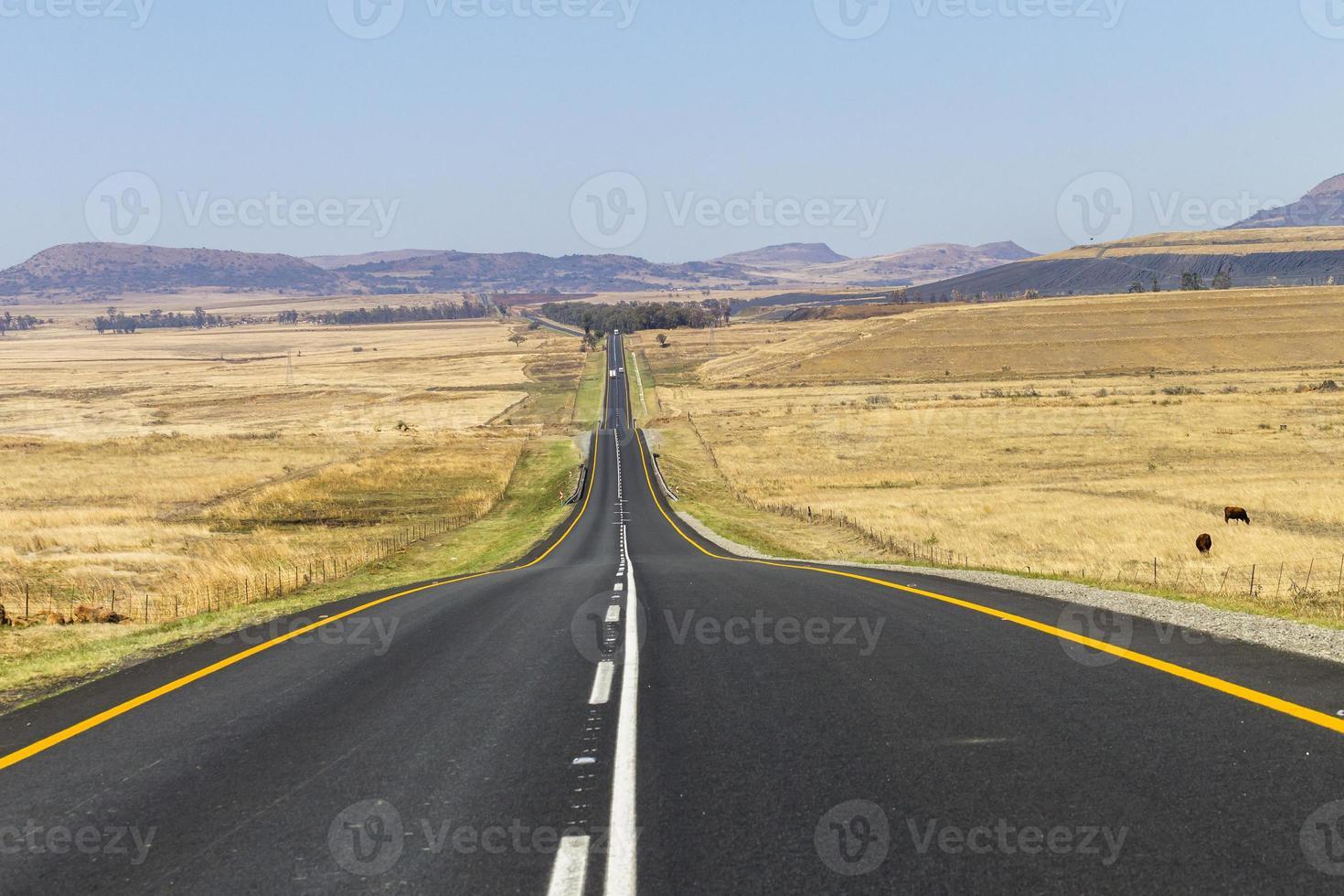 camino recto foto