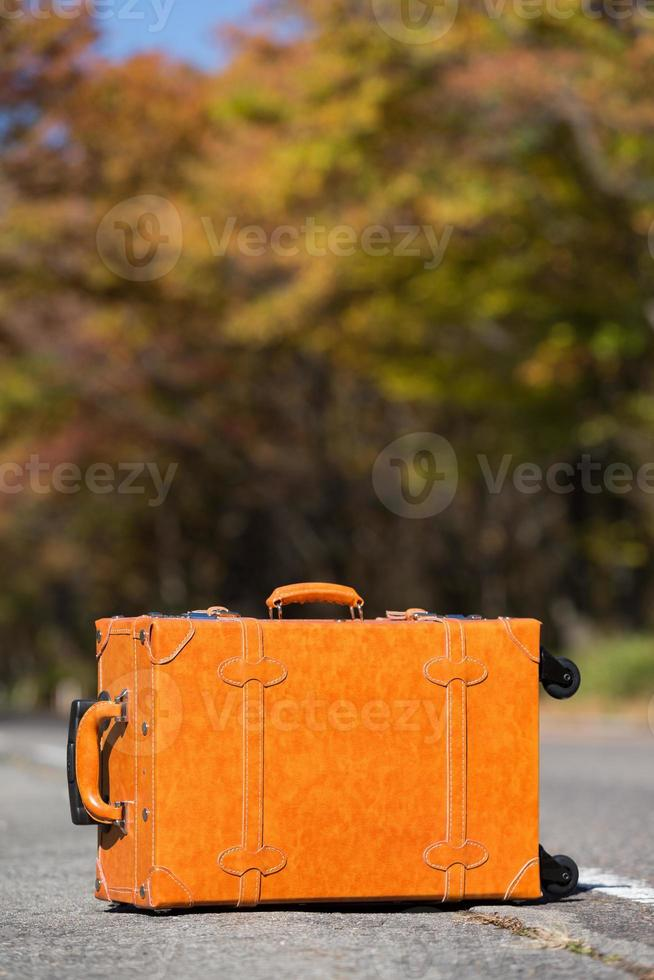 The yellow leaves the road and travel bag photo