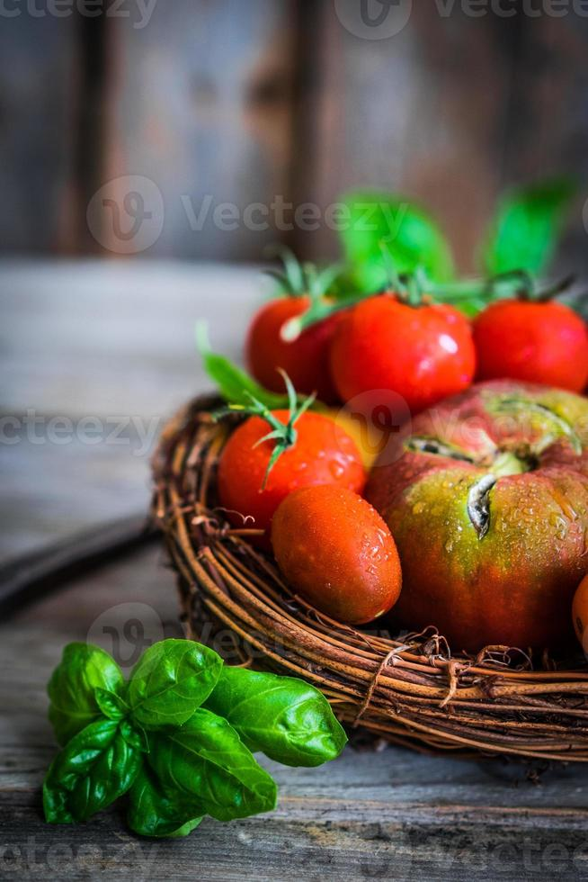 Multicolored tomatoes on rustic wooden background photo