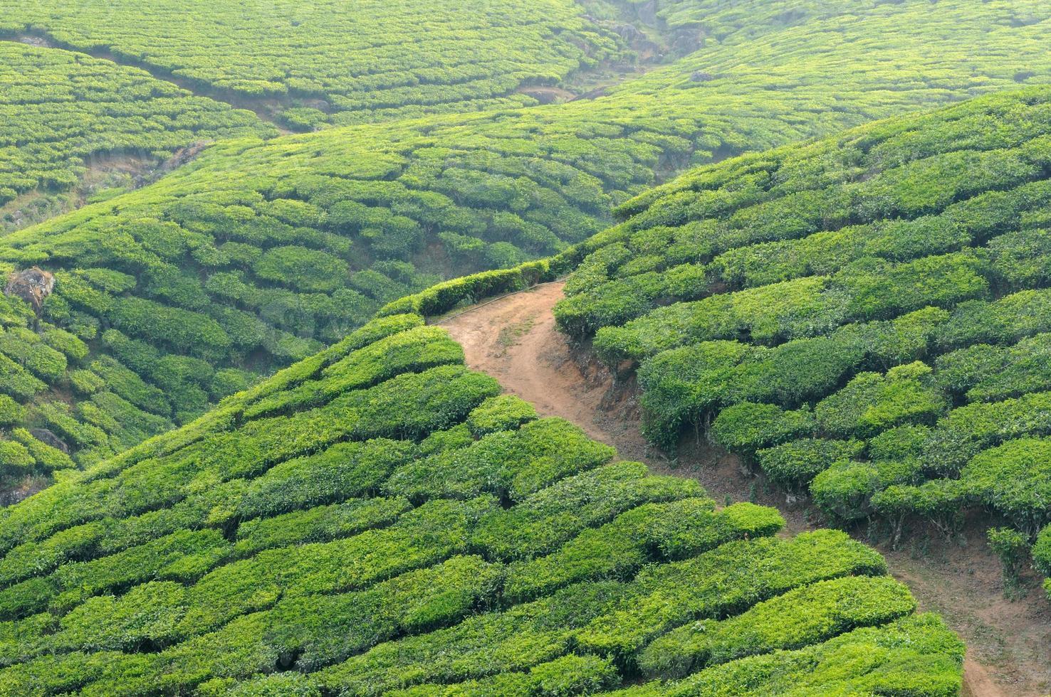 Kerala photo