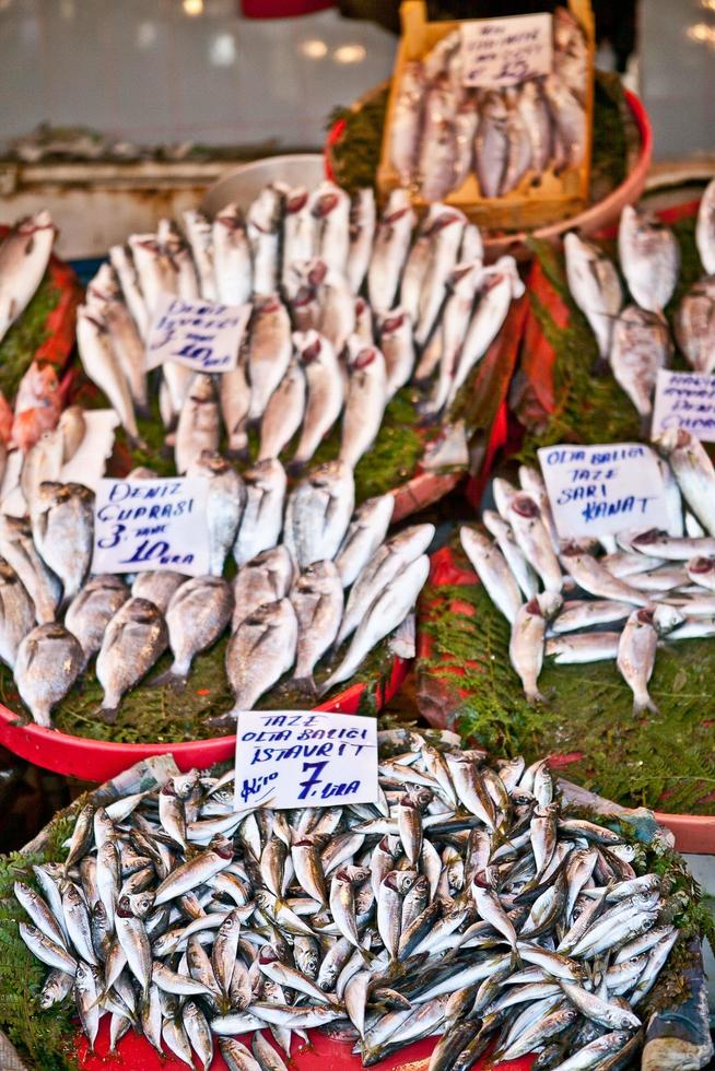 Fish shop in Istanbul photo