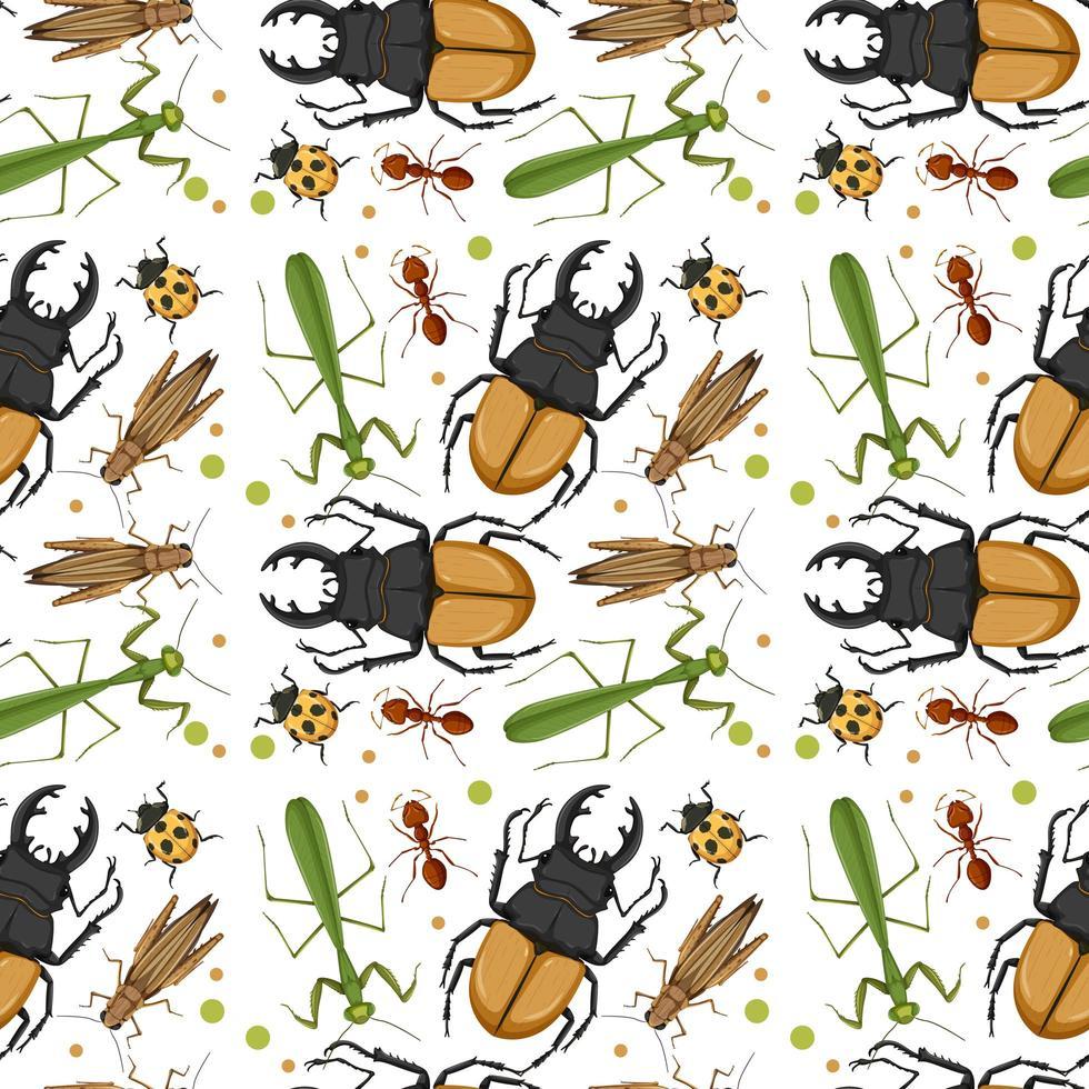 patrón de diferentes insectos vector