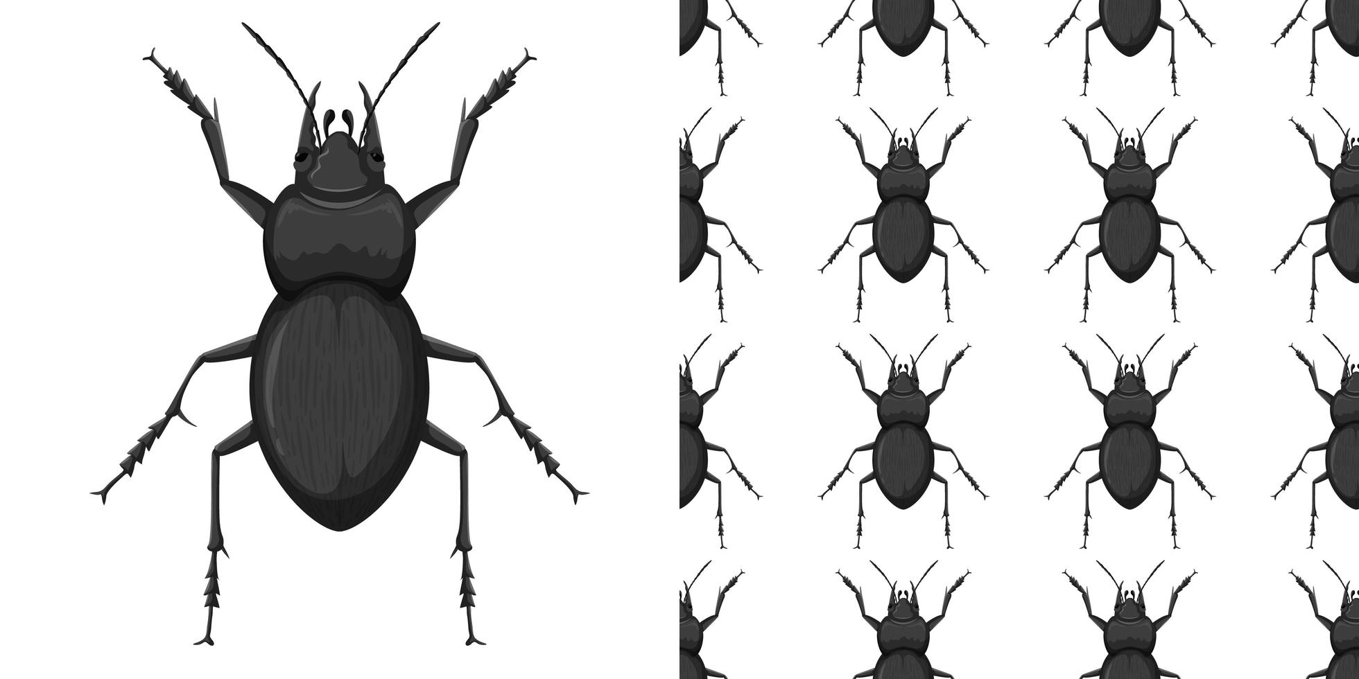 Carabidae and pattern isolated on white vector