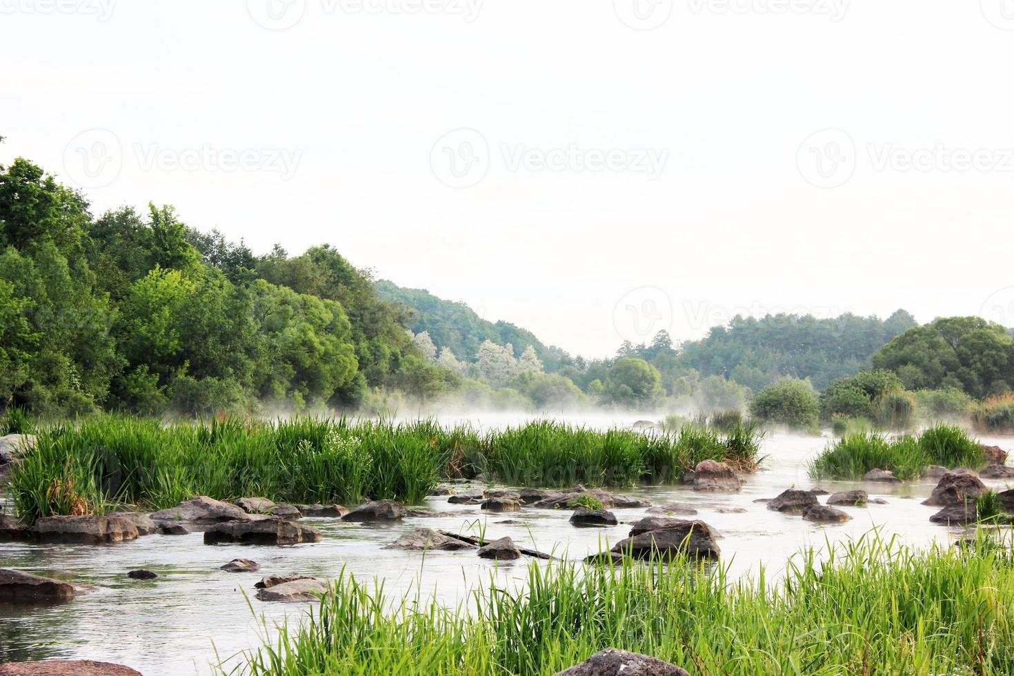Summer morning on the river photo