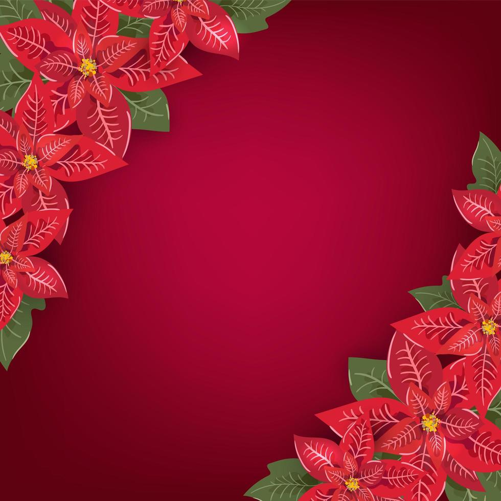 Red Christmas greeting card with poinsettia corners vector
