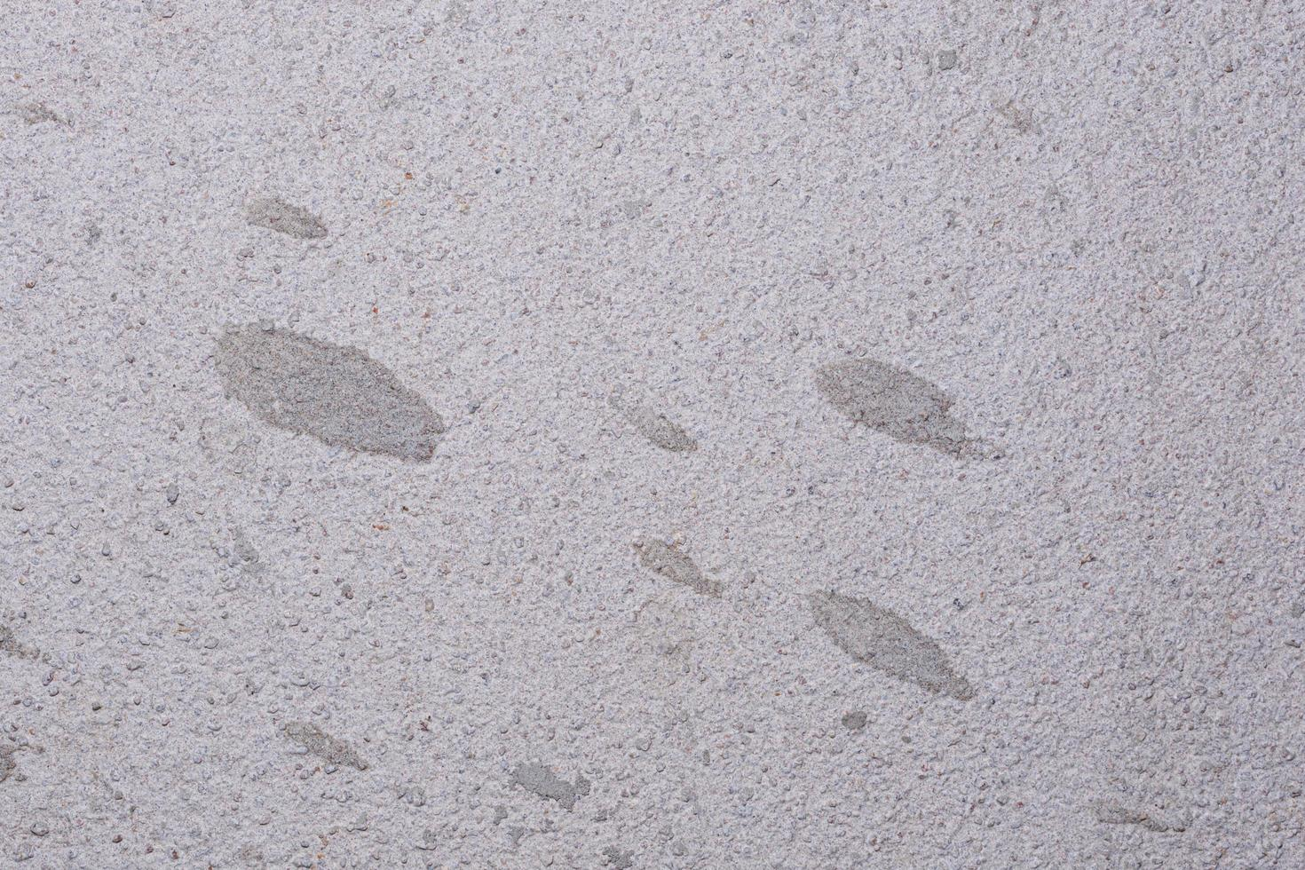 Old cement floor background photo
