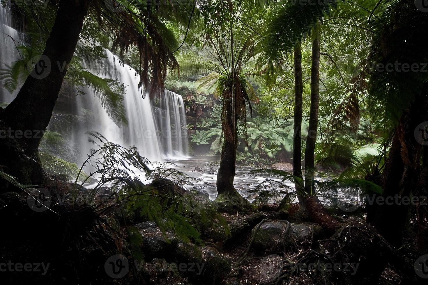 Russell Falls en Tasmania foto