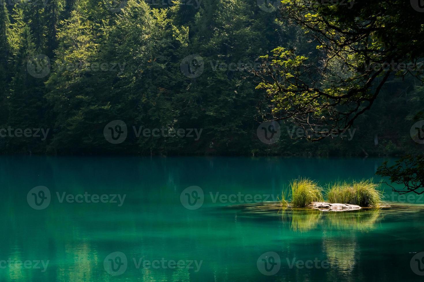 lago de montaña con una pequeña isla foto