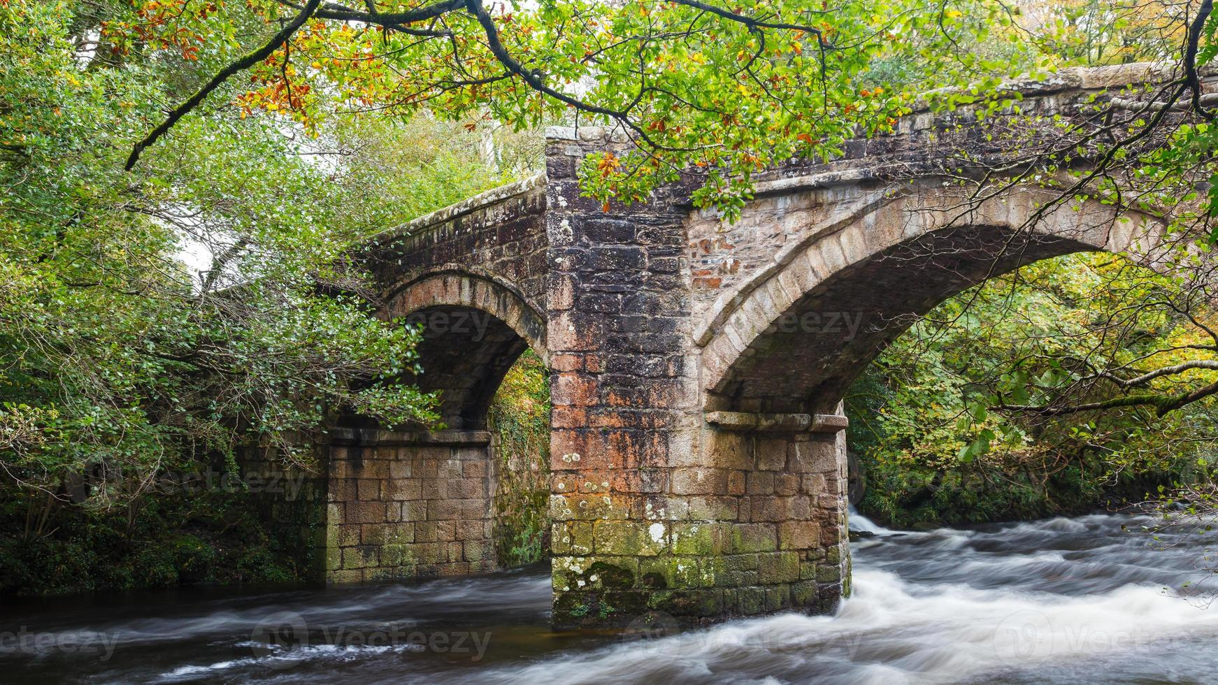 Newbridge Dartmoor Devon foto