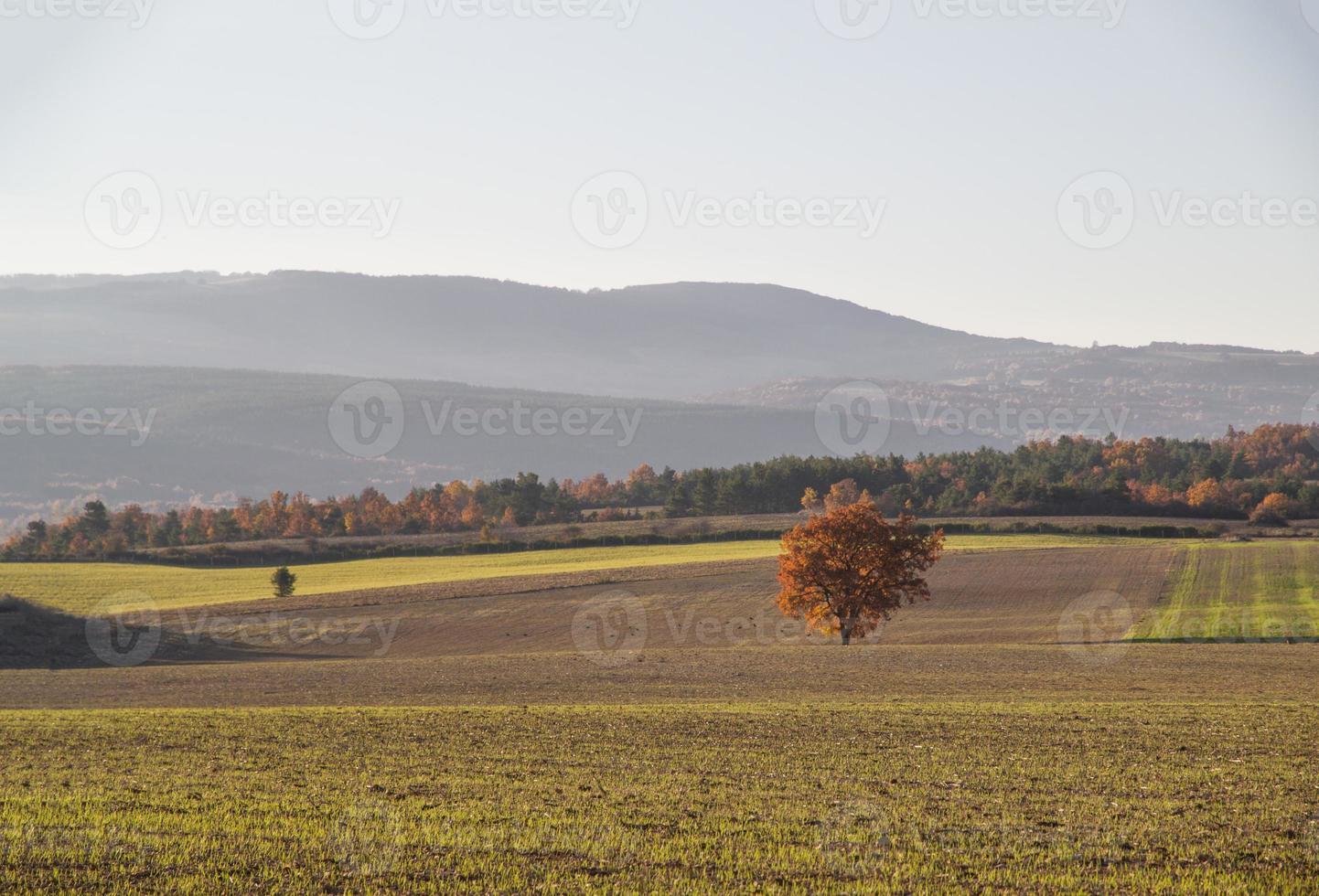 colores de otoño en un valle rural foto
