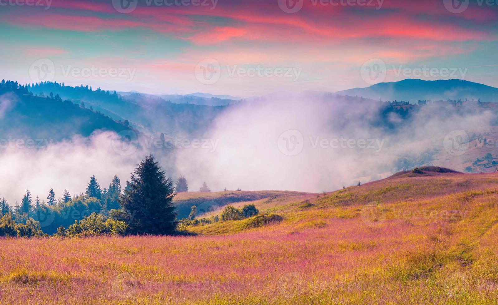 manhã nublada de verão nas montanhas dos Cárpatos. foto