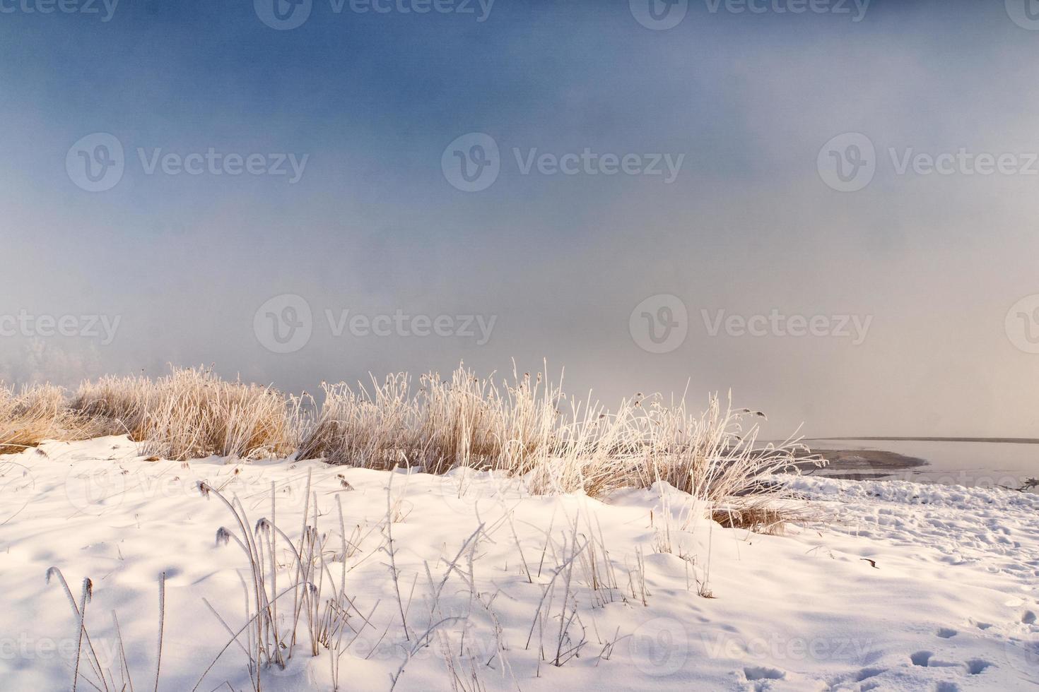 día de invierno nevado, lago chiemsee foto
