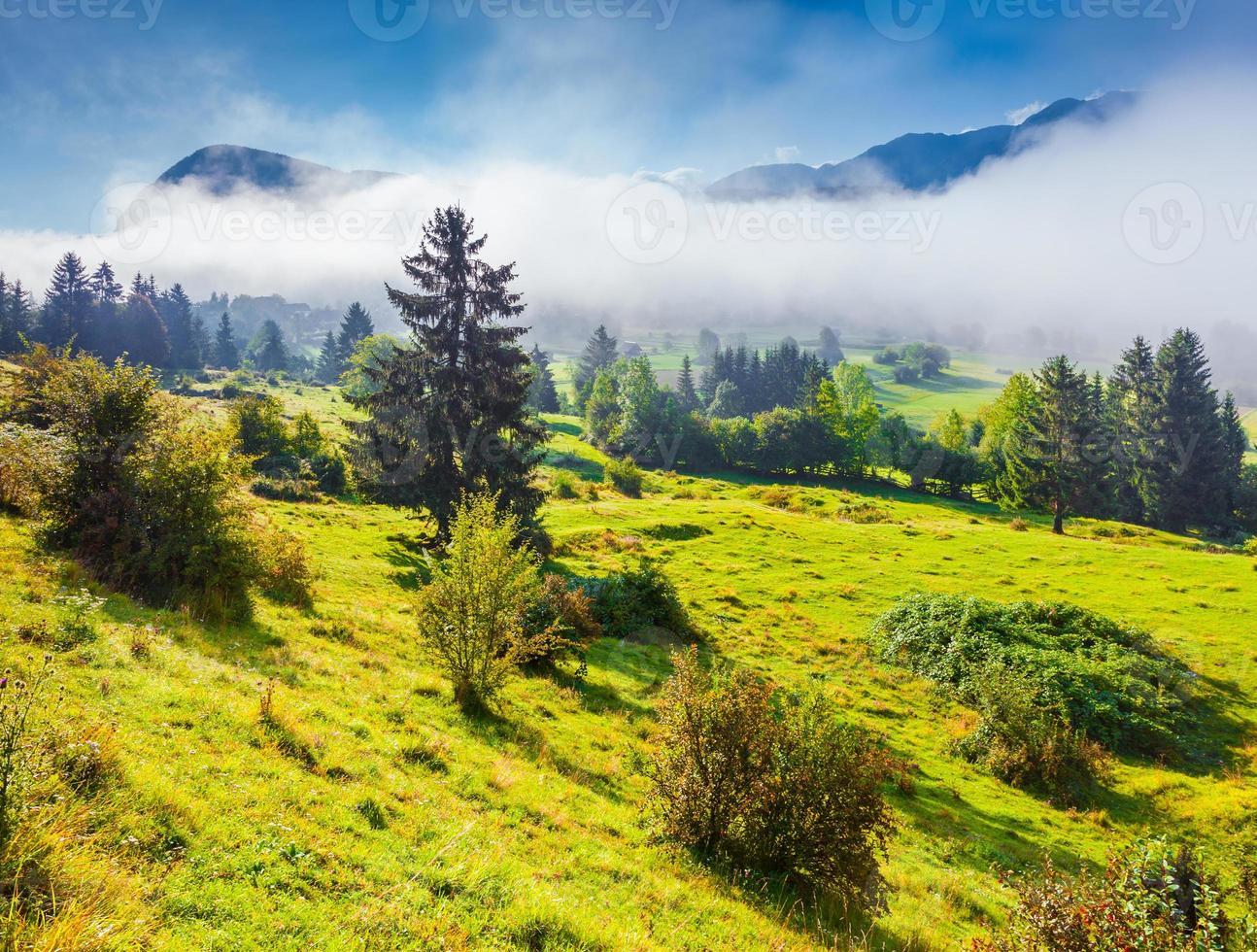 brumosa mañana de verano en el parque nacional de triglav foto