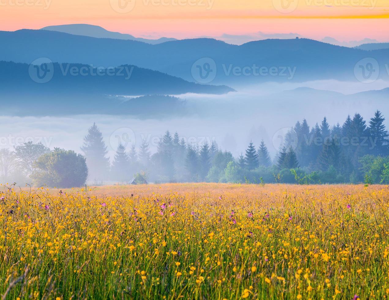 Colorido amanecer de verano en las neblinosas montañas de los Cárpatos foto