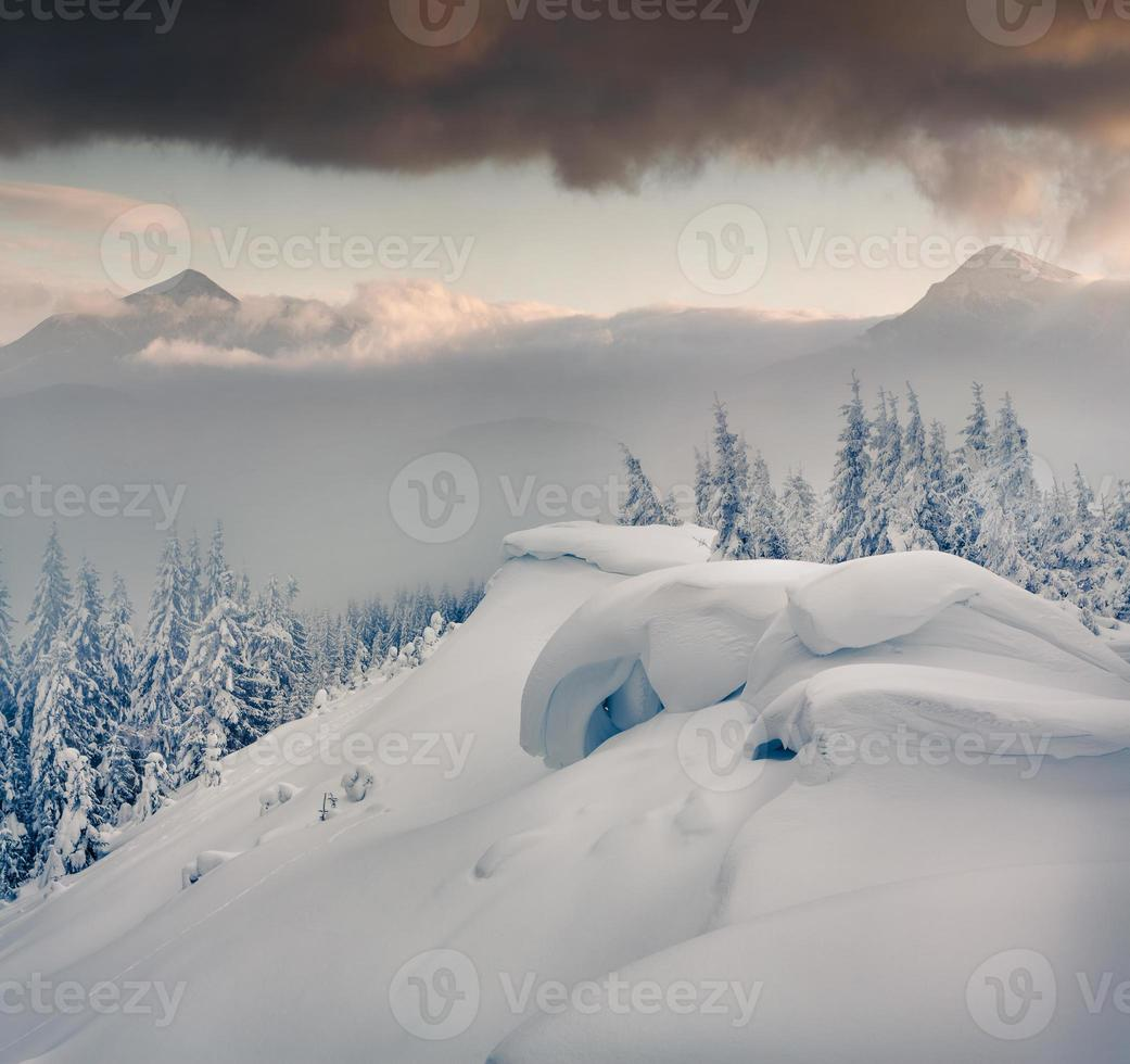 Foggy winter morning in the Carpathian mountains. photo