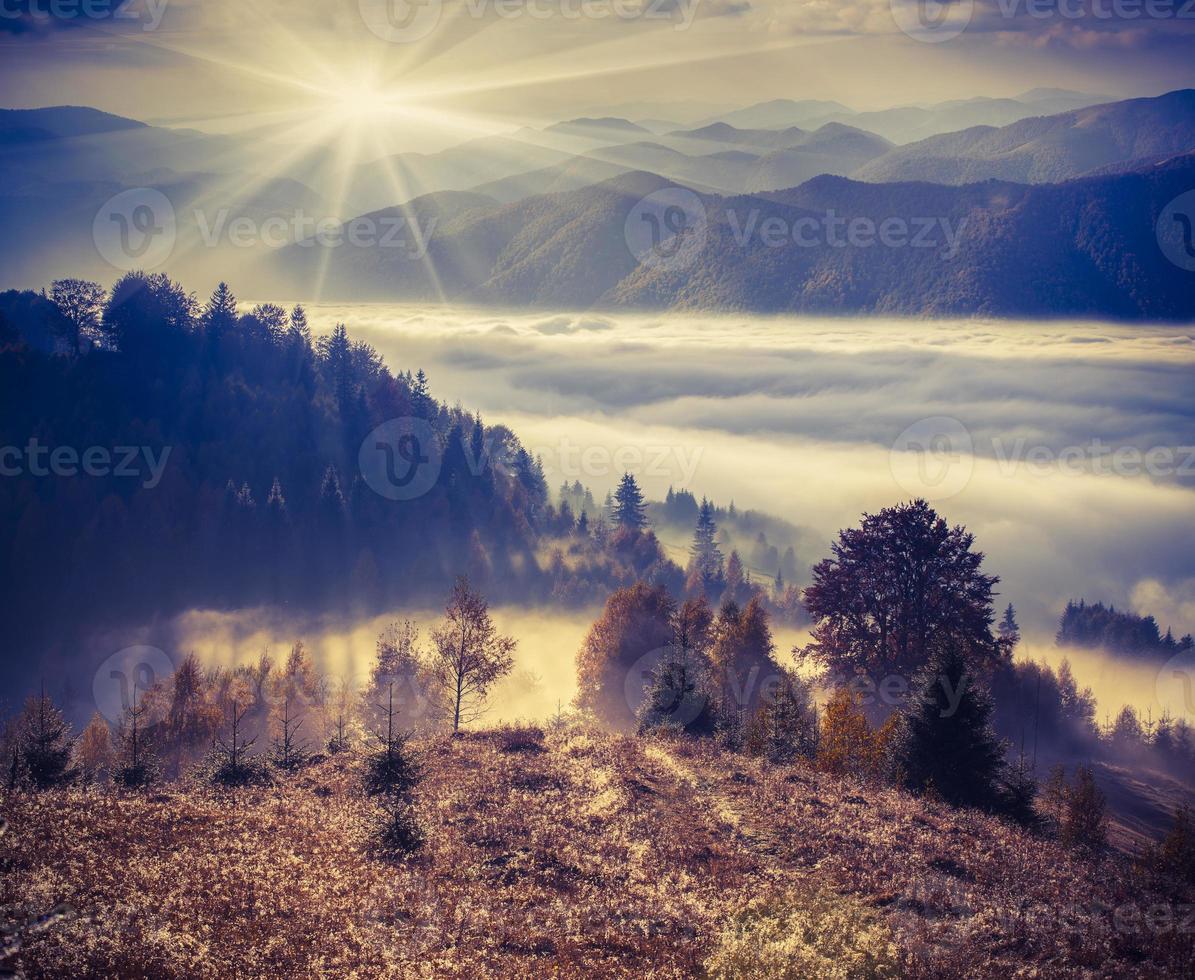 manhã nublada de outono nas montanhas. foto