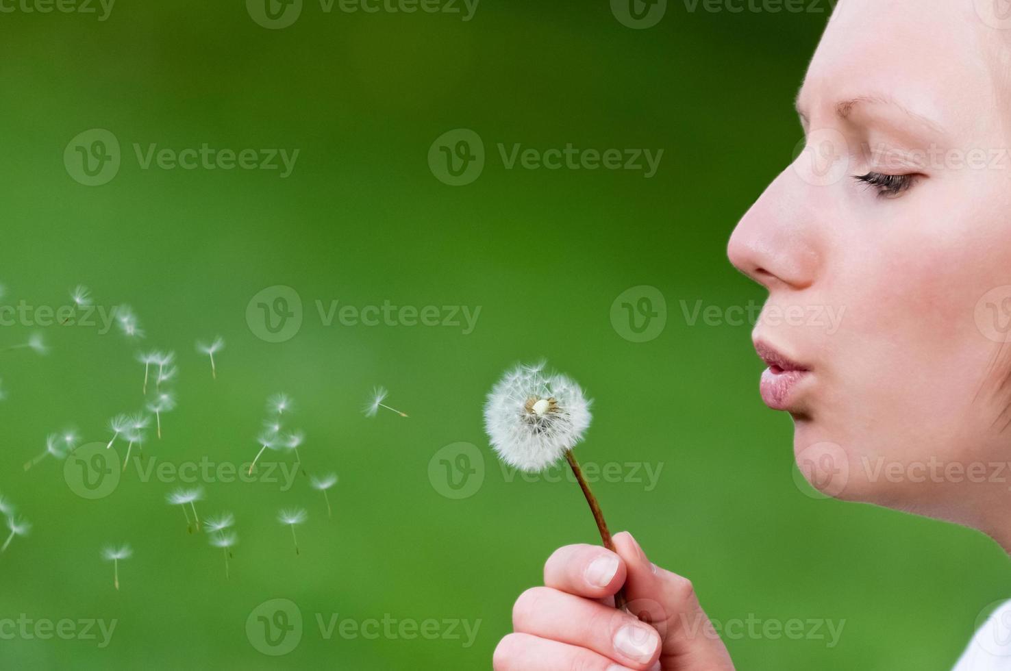 Beautiful girl is blowing dandelion photo