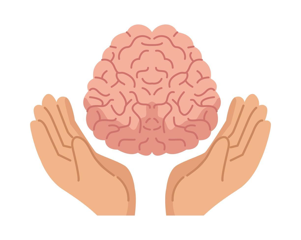 manos protegiendo el cerebro humano, icono de salud mental vector