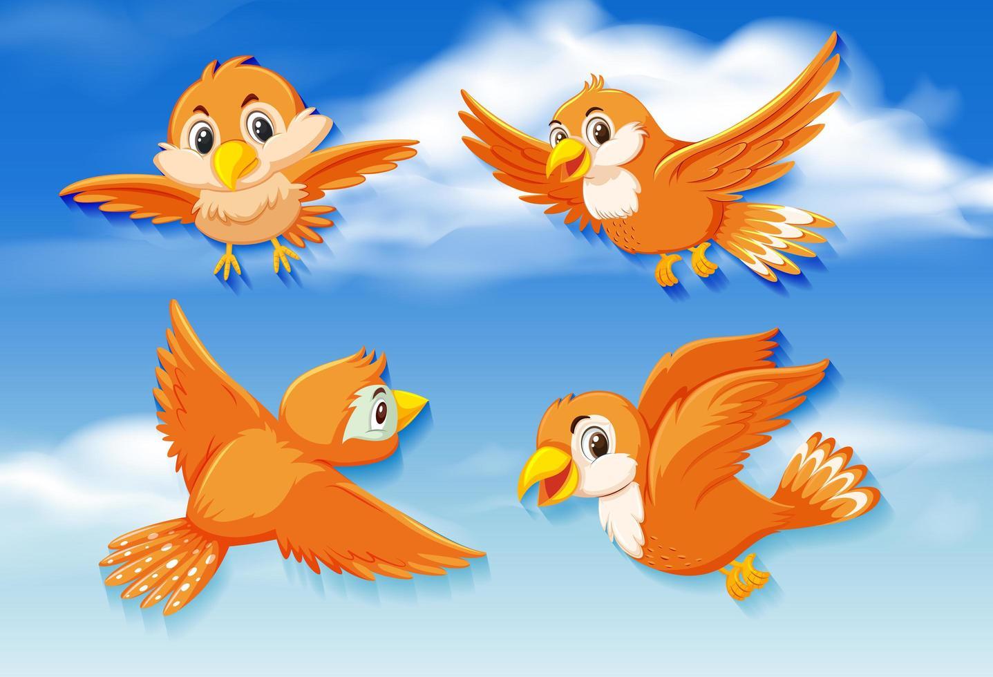 pájaros naranjas en el cielo vector