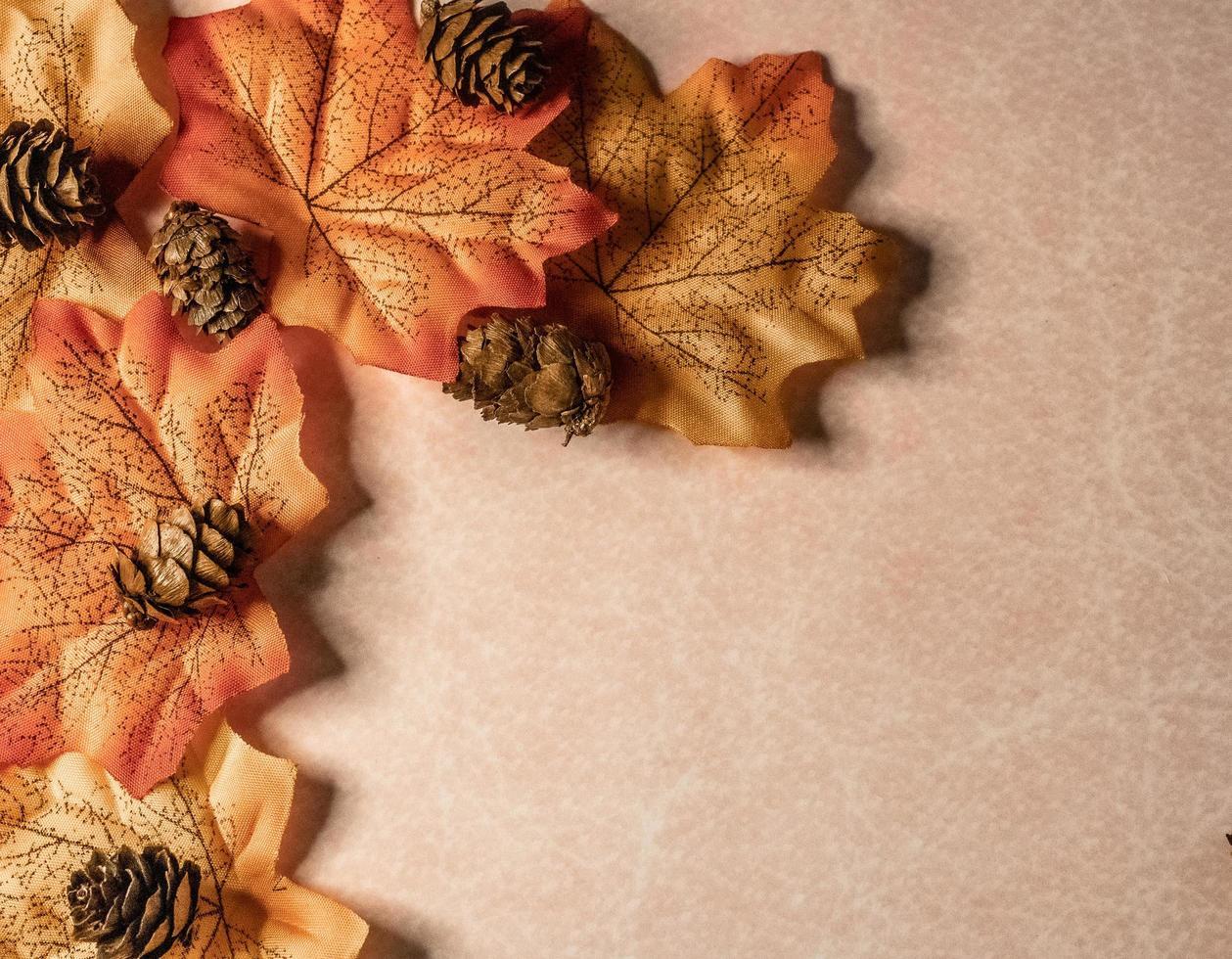 borde de hojas de otoño foto