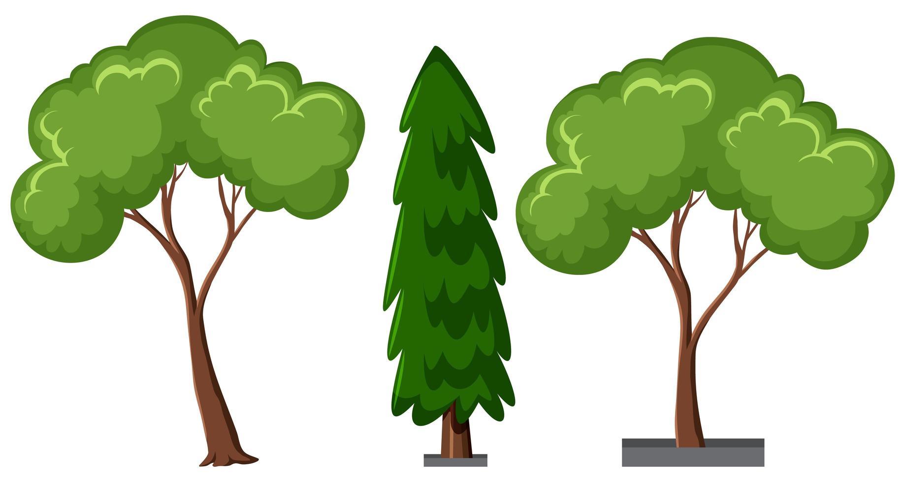 conjunto de diferentes árvores isoladas no fundo branco vetor