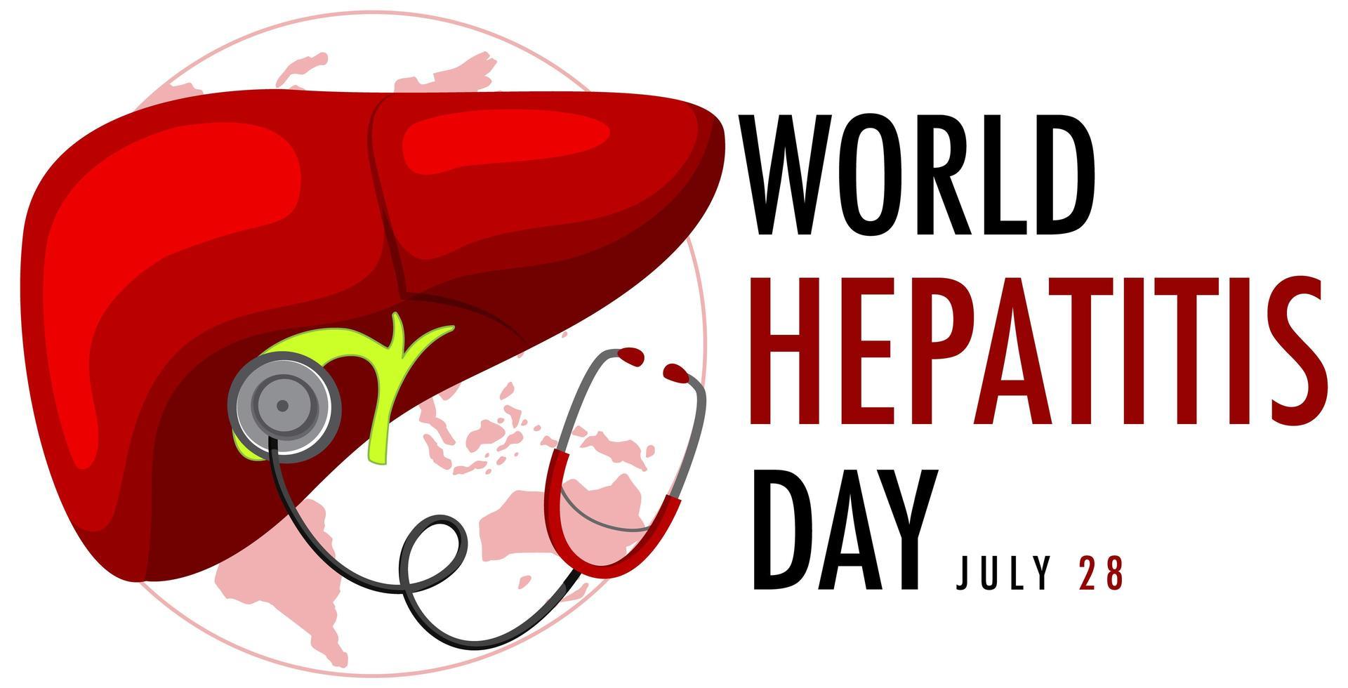 banner del día mundial de la hepatitis con hígado y estetoscopio vector