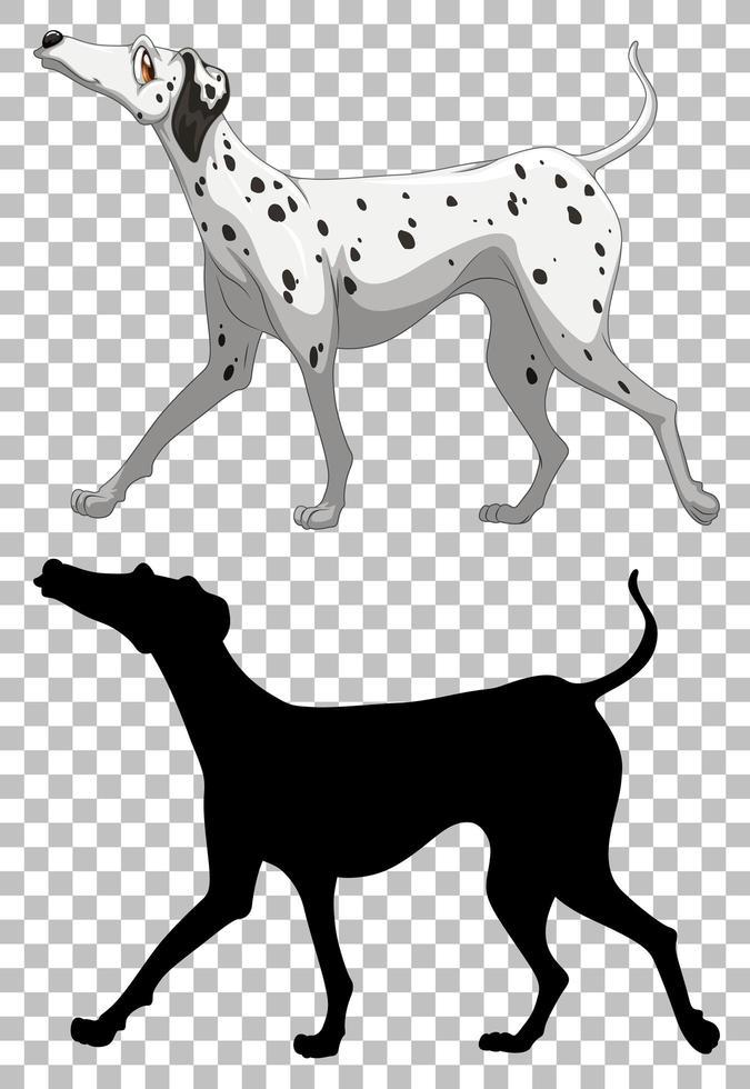 perro dálmata y su silueta vector