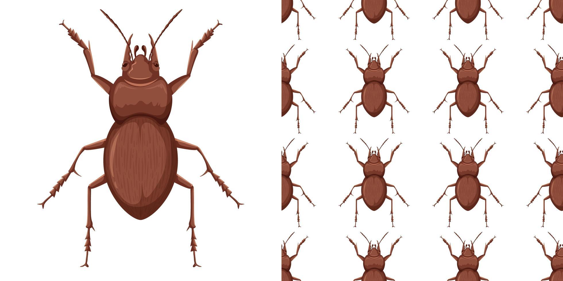 insecto escarabajo y patrón vector